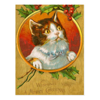 Gatito del navidad con las bayas del acebo postales