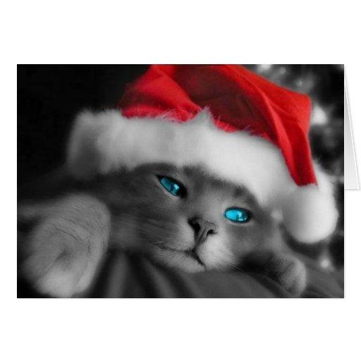 Gatito del navidad felicitacion