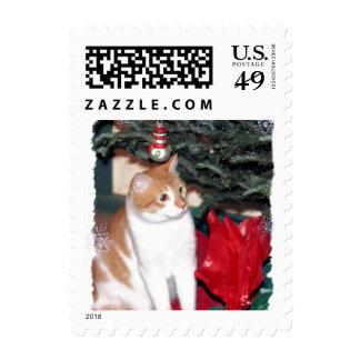 Gatito del navidad sello postal