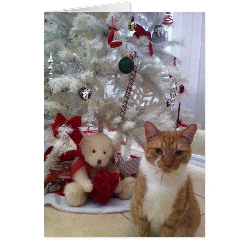 Gatito del navidad tarjeta de felicitación