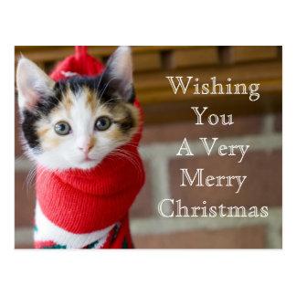Gatito del navidad tarjetas postales