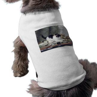 Gatito del smoking que juega los dominós que pinta camisa de mascota