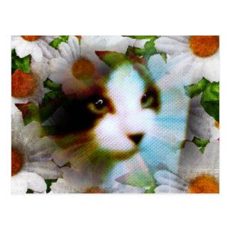 gatito del sondeo de la raqueta rodeado por las tarjeta postal