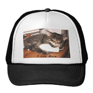 Gatito del Tabby con el ratón del ordenador, raton Gorro