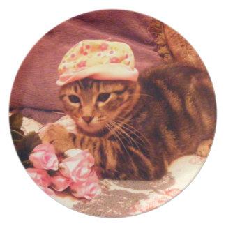 gatito del tabby en placa del gorra platos