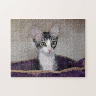 Gatito del Tabby en una cama púrpura Puzzle