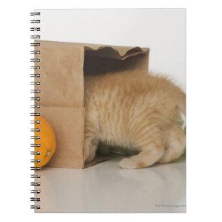 Gatito dentro del bolso de ultramarinos libro de apuntes con espiral