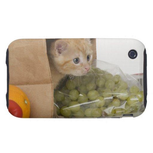 Gatito dentro del bolso de ultramarinos iPhone 3 tough cárcasas
