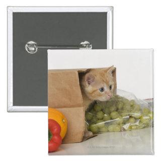 Gatito dentro del bolso de ultramarinos pin cuadrada 5 cm