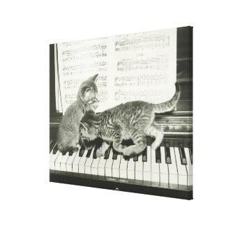 Gatito dos que juega en el teclado de piano, (B&W) Impresion De Lienzo