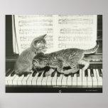 Gatito dos que juega en el teclado de piano, (B&W) Poster