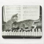 Gatito dos que juega en el teclado de piano, (B&W) Alfombrillas De Ratones