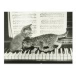 Gatito dos que juega en el teclado de piano, (B&W) Tarjetas Postales