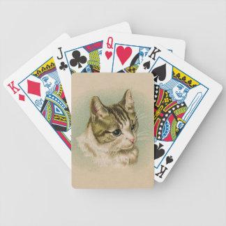 Gatito dulce barajas de cartas