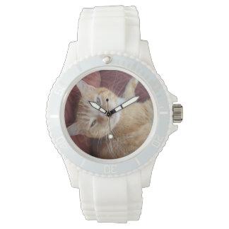 Gatito dulce relojes