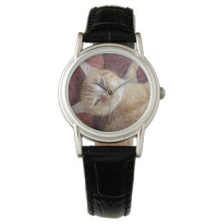 Gatito dulce relojes de mano