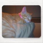 Gatito el dormir alfombrilla de raton