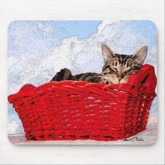 Gatito el dormir en cesta roja brillante alfombrillas de ratones