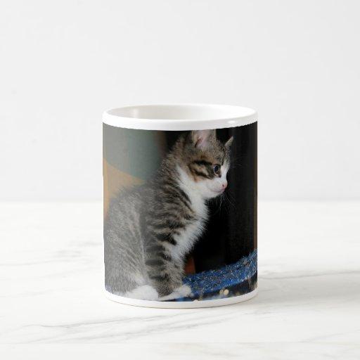 Gatito el gatito taza básica blanca