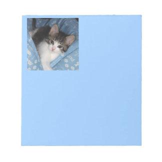 Gatito en azul bloc