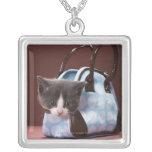 Gatito en bolso collar plateado