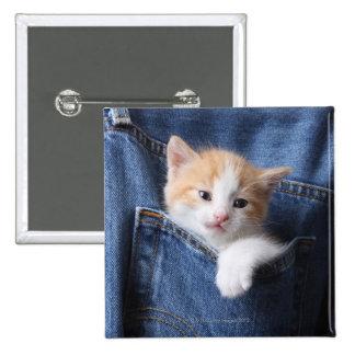 gatito en bolso de los vaqueros pins