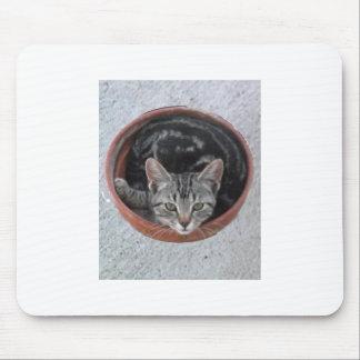 Gatito en cojín de ratón de la maceta tapete de raton