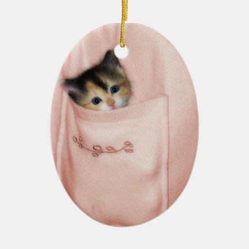Gatito en el bolsillo 2 adorno