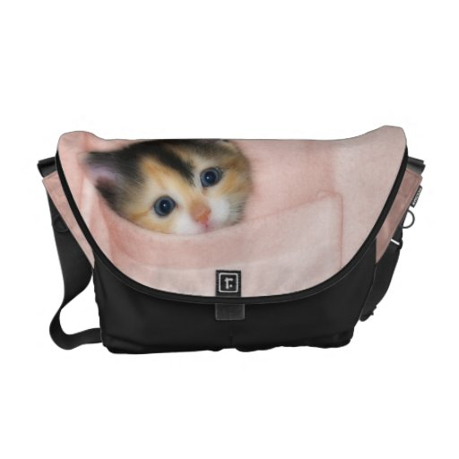 Gatito en el bolsillo 2 bolsas messenger