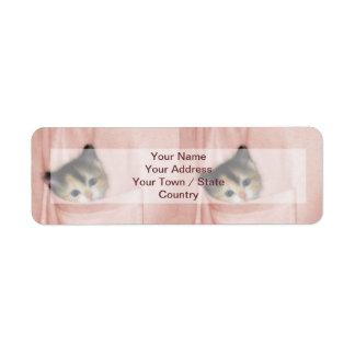 Gatito en el bolsillo 2 etiquetas de remite