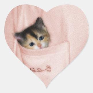 Gatito en el bolsillo 2 pegatina en forma de corazón