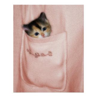 Gatito en el bolsillo 2 perfect poster
