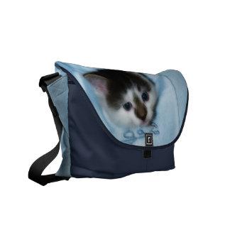 Gatito en el bolsillo bolsa de mensajeria