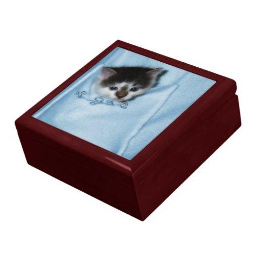 Gatito en el bolsillo joyero cuadrado grande