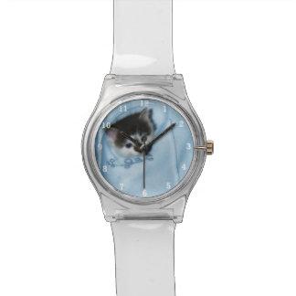 Gatito en el bolsillo relojes de pulsera
