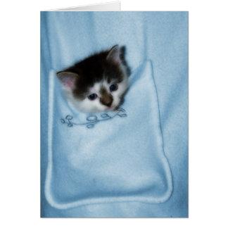 Gatito en el bolsillo tarjeta de felicitación