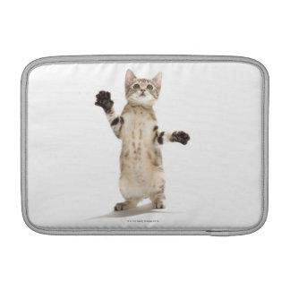 Gatito en el fondo blanco funda  MacBook