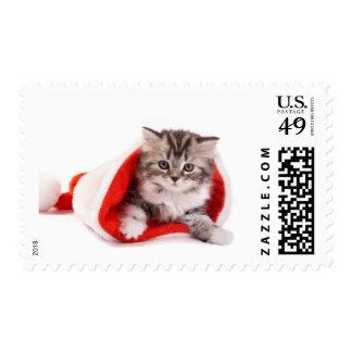 Gatito en el gorra de Santa Estampilla