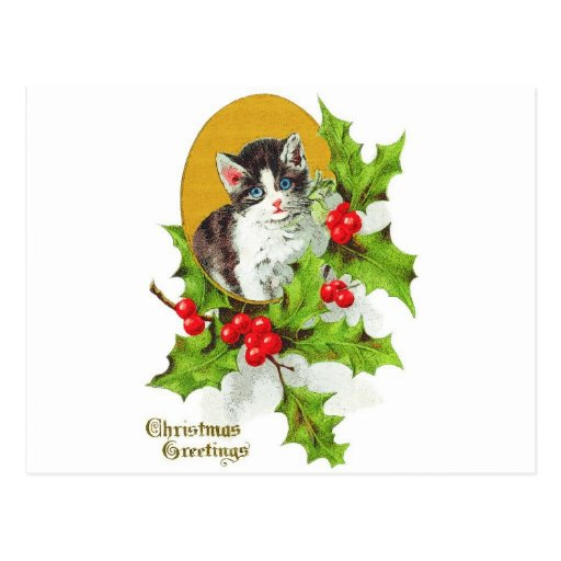 Gatito en Felices Navidad del acebo Tarjetas Postales