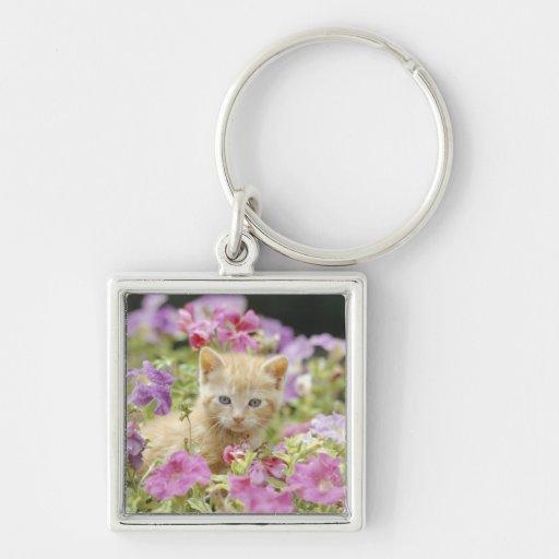 Gatito en flores llavero cuadrado plateado