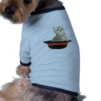 Gatito en gorra negro camiseta con mangas para perro