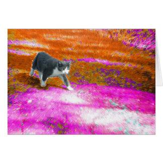 Gatito en piscina de hadas del rosa de la tierra tarjeta de felicitación