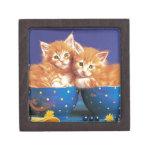 Gatito en tazas caja de recuerdo de calidad