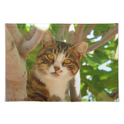 Gatito en un árbol manteles individuales