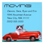 Gatito en un convertible rojo anuncio personalizado