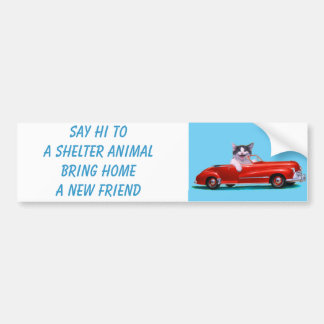 Gatito en un convertible rojo pegatina para auto