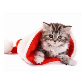Gatito en un gorra de Santa Postales