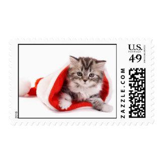 Gatito en un gorra de Santa Sello Postal