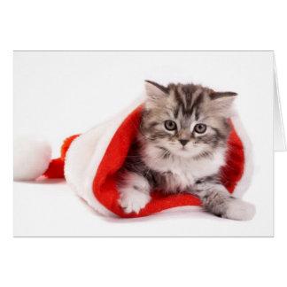 Gatito en un gorra de Santa Tarjeta De Felicitación