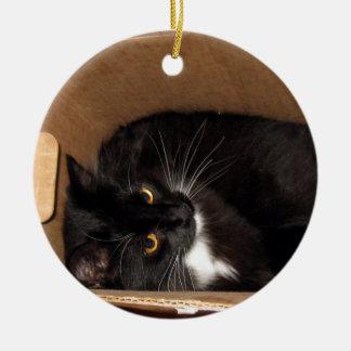 Gatito en una caja - fotografía adorno navideño redondo de cerámica